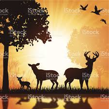 deer family buck doe fawn silhouette background stock vector