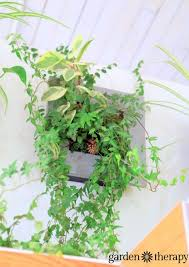 Wall Planters Indoor by Best 10 Vertical Wall Planters Ideas On Pinterest Wall Gardens
