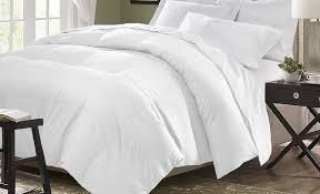 All Seasons Duvet Double Down Comforters U0026 Duvet Inserts Joss U0026 Main