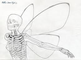 winged skeleton graphite pencil illustration matthew james taylor