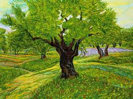 thierry hennequin olive tree canvas painting 271749 view all