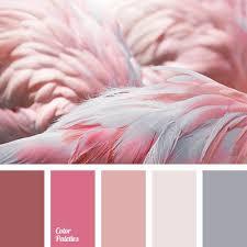 25 unique flamingo color ideas on pinterest flamingo birthday