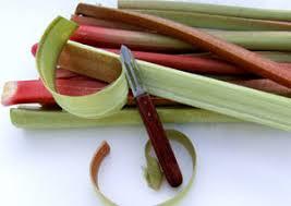 cuisiner la rhubarbe comment cuisiner la rhubarbe trouver une recette