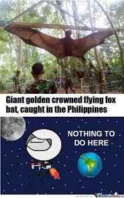 Damn Nature You Scary Meme - damn nature you scary by giovanni dundakov meme center