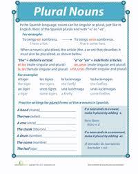 spanish plural worksheet education com