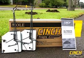 cinch traps mole kit cinch traps