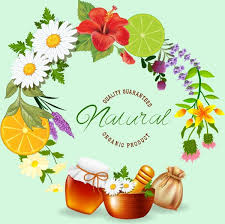 fruits flowers herbs advertising colorful fruits flowers decoration free