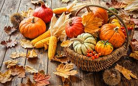 thanksgiving a harvest festival with roots in sukkot