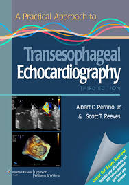 a practical approach to transesophageal echocardiography ebook by