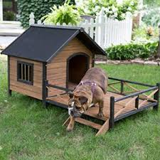 top 10 best large outdoor dog kennels in 2017 reviews