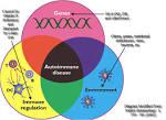 espectro <b>autoinmune</b> de las