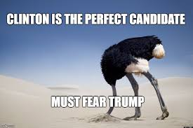Ostrich Meme - ostrich head in sand latest memes imgflip