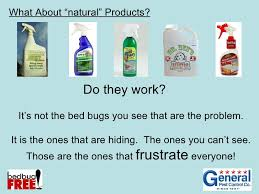 What Kills Bed Bugs Naturally 3 1 Treatment Options For Bed Bugs And Resident Preparation