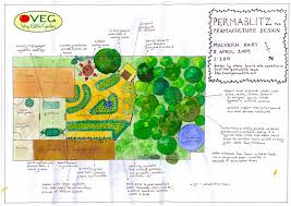Permaculture Vegetable Garden Layout Funky Permaculture Designs By Veg Milkwood Permaculture