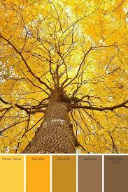 135 best paint colors images on pinterest haciendas colours and