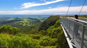 sydney the hills treetops sydney illawarra fly treetops walk entry ticket reviews klook