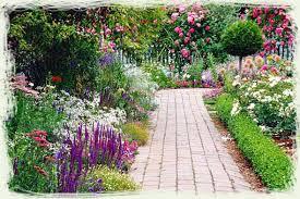 perennial flower garden ideas photograph flowers garden su