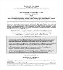 Sample Resume Of Ceo by Ceo Resume Ceo U0026 Evp Sample Resume Executive Resume Services