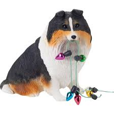 sheltie x australian shepherd amazon com sandicast tri shetland sheepdog holding holiday lights