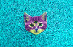 Cats In Small Spaces Video - space cat gif find u0026 share on giphy
