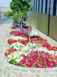 imagenes de jardines pequeños con flores decoración de parques decoractual diseño y decoración