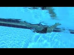 203 best sports swimming drills images on pinterest angles