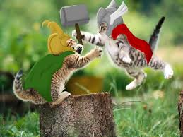 thor vs loki cat version by five tailes on deviantart