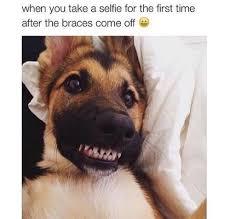 Braces Meme - image about smile in funny shiiiiiiit by prexcila