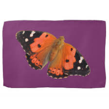 butterfly designs tea towels zazzle co uk