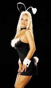 Playboy Bunny Costume Halloween Types Bunny Costumes Hubpages