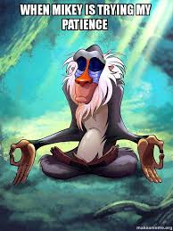 Mikey Meme - when mikey is trying my patience rafiki meditating lion king