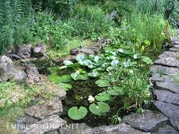 Small Garden Ponds Ideas 17 Beautiful Backyard Pond Ideas For All Budgets Empress Of Dirt