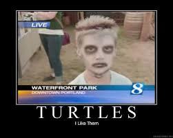 I Like Turtles Meme - image 23346 i like turtles know your meme