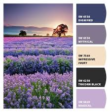 237 best color my world images on pinterest appetizer recipes