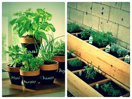 Potted Herb Garden Ideas 12 Gift Ideas For This Coming Herbs Herbs Garden And