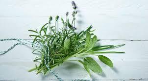 comment utiliser le romarin en cuisine plantes aromatiques comment les utiliser en cuisine