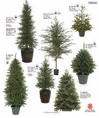 indoor evergreen trees artificial indoor trees bushes