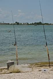 44 best things to do in ft myers beach images on pinterest fort