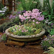 120 best container gardening pots planters containers plants