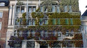 incredible vertical gardens around the world the weather channel