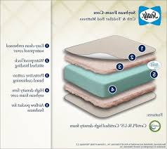 Sealy Soybean Serenity Organic Crib Mattress Bedding Cribs Shabby Chic Baby Boy Trend Lab Plaid Pillows Mini