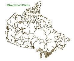 Interior Plains Population Overview Of Canada U0027s Major Forest Ecozones