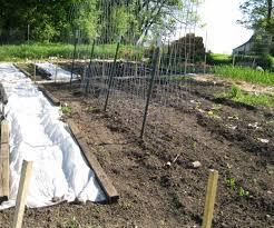 Curved Trellis Fence Panels Hog Wire Fence Panels Image Of Hog Fence Panels Garden Full Size