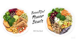 copper branch 100 plant based power food