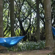 tree stand hammock seat cing 10666 interior decor