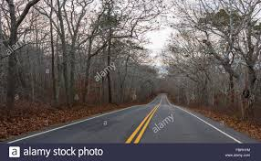 country road with painted double yellow lines leading through a