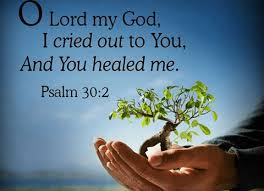 Comforting Messages From The Bible 130 Bible Verses About Healing The Sick