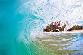 the molokini a transparent ocean kayak so genius we wish we u0027d