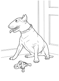 1621 animal coloring pages images coloring