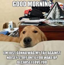 Best Day Meme - national dog day hilarious memes of man s best friend